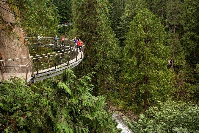 آشنایی با پل معلق کاپیلانو (capilano bridge) ونکوور کانادا
