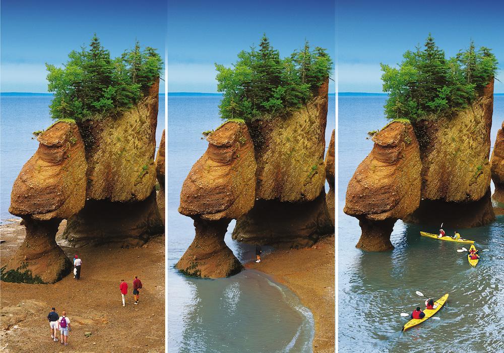 آشنایی با خلیج فاندی (fundy bay) کانادا
