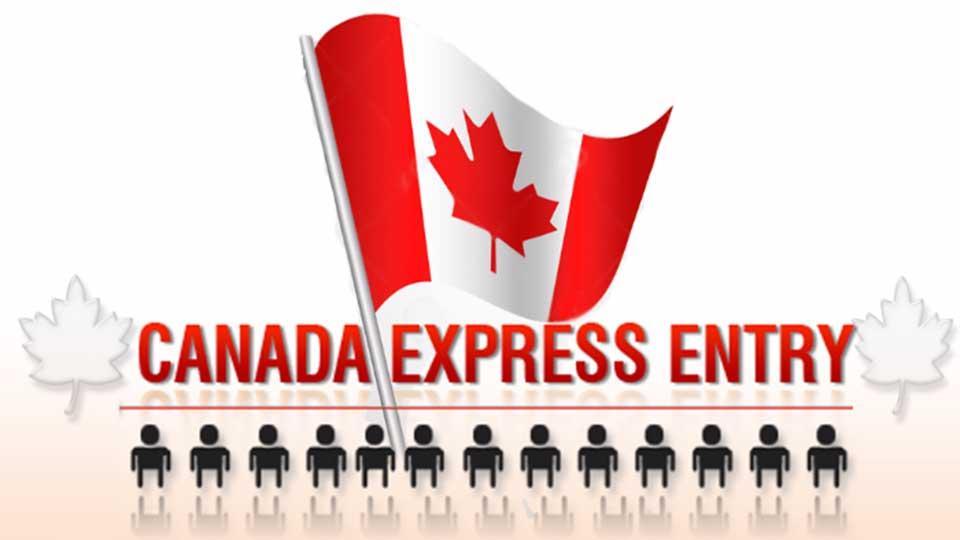 مهاجرت کاری به کانادا تحت پوشش اکسپرس اینتری
