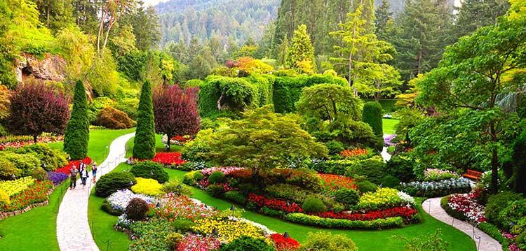 معرفی باغ های گل بوچارت کانادا (Butchart Gardens)