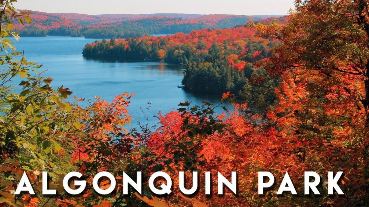 تور پاییزی کانادا پارک آلگون کوئین انتاریو سفرنامه تور یکروزه از تورنتو