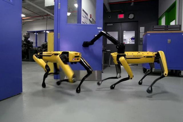 گشت زنی سگ رباتیک بوستون دینامیکس در خیابانهای کانادا