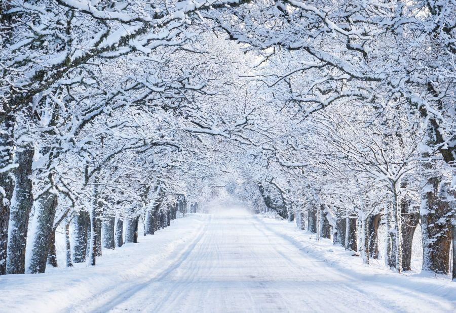 سفر به کانادا در زمستان