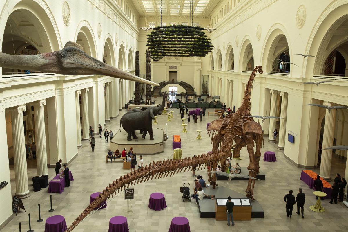 موزه تاریخ طبیعی فیلد شیکاگو آمریکا (Field Museum)