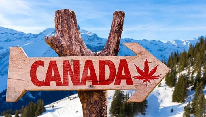 توصیه های سفر: پیشنهاد گردش در کانادا با هزینه کم