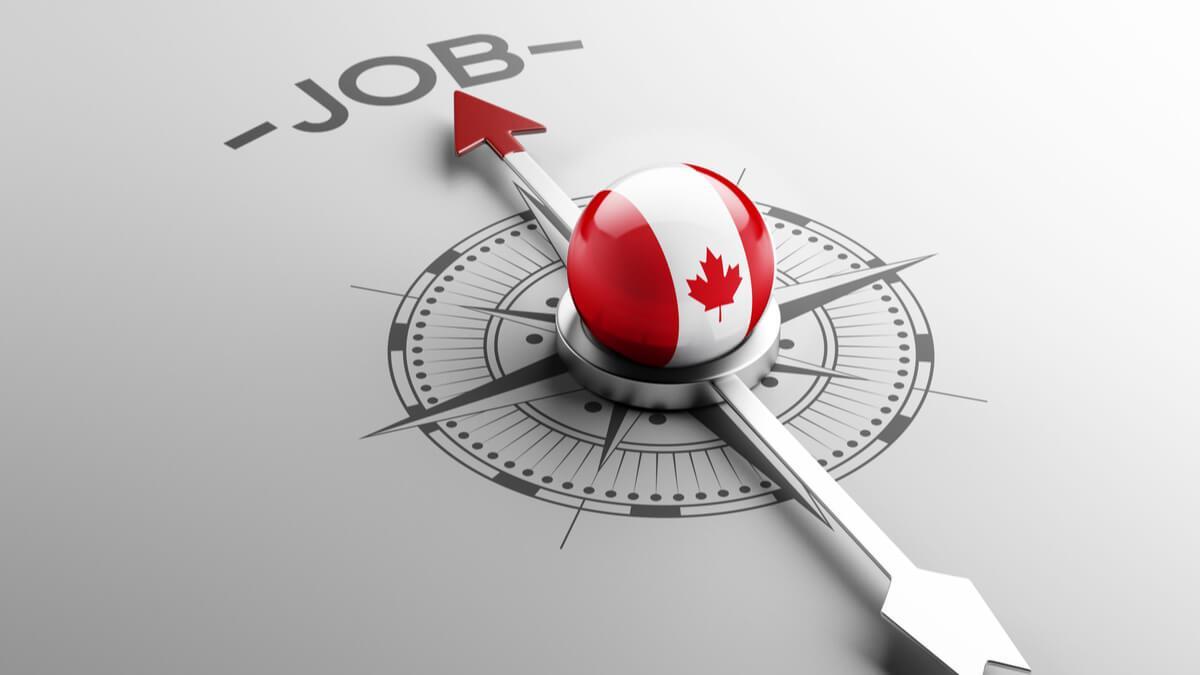 چگونه در کانادا شغل پیدا کنید؟