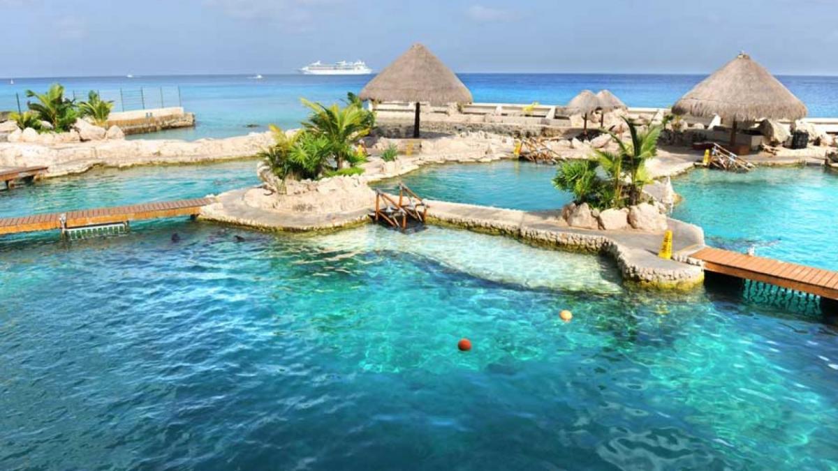 جزیره Cozumel مکزیک
