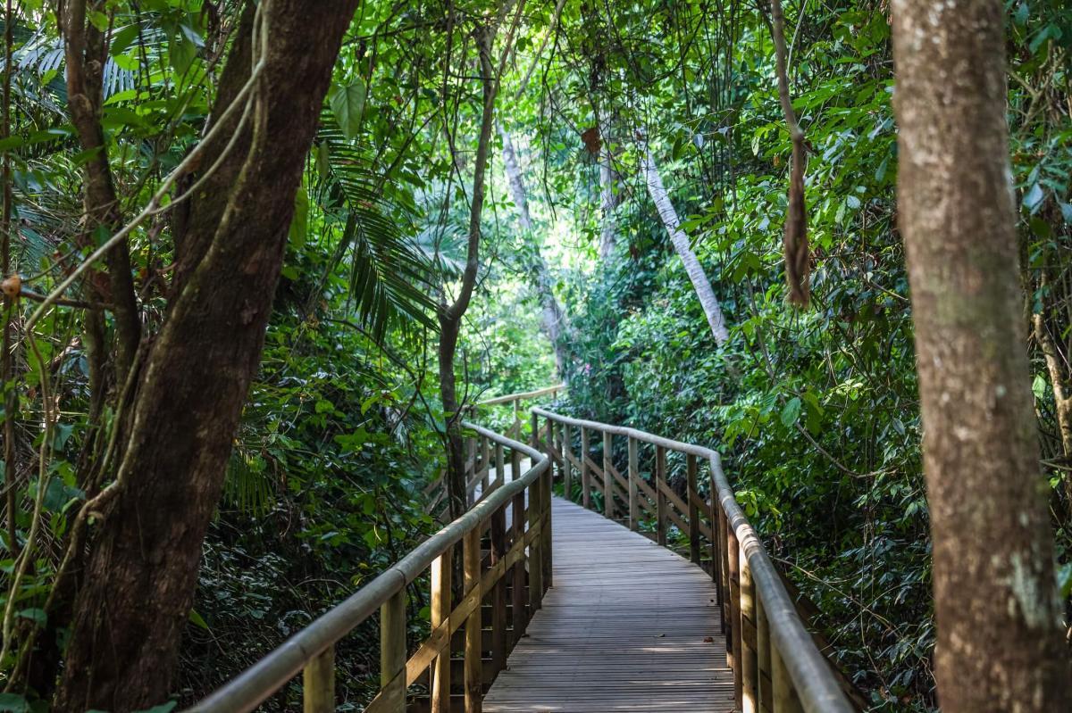 پارک ملی Manuel Antonio کاستاریکا