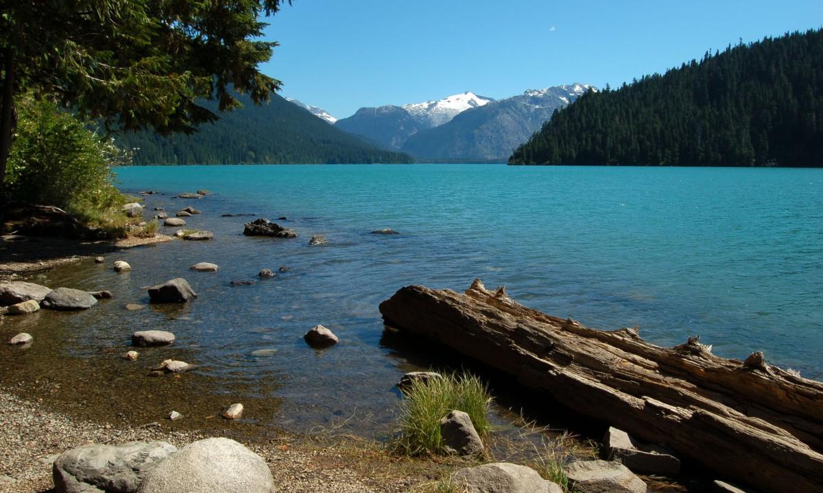 بهترین چیزهایی که باید در ونکوور و ویستلر کانادا تجربه کنید!