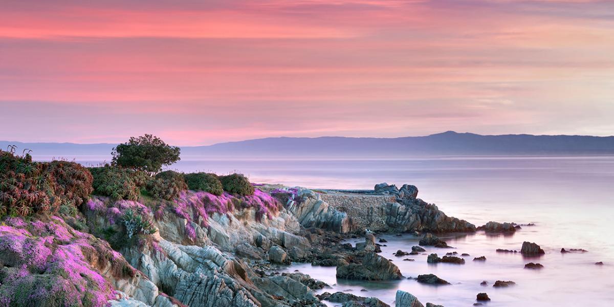 چگونه می توان برای یک تعطیلات آخر هفته در Pacific Grove آمریکا برنامه ریزی کرد