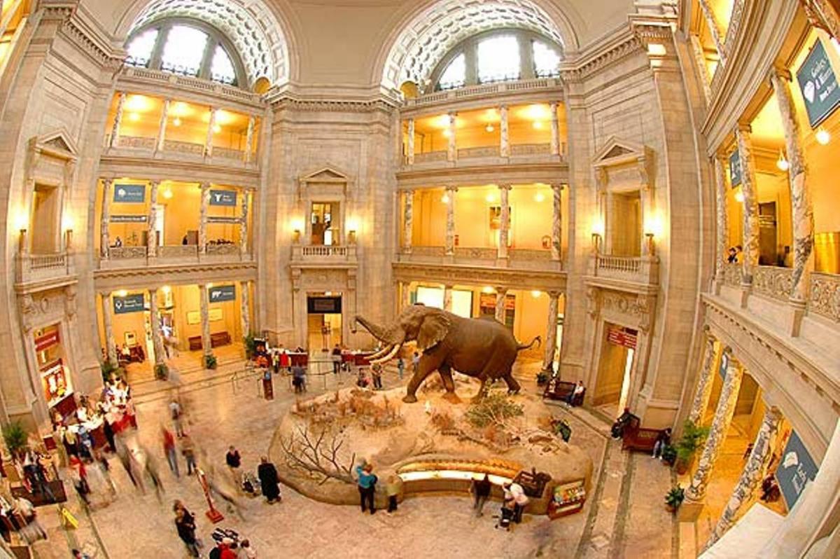 موزه ملی تاریخ طبیعی اسمیت سونیان، واشنگتن آمریکا