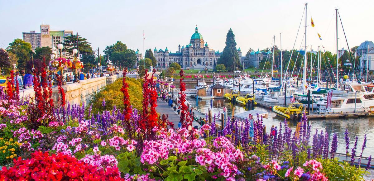 زندگی در ویکتوریا (Victoria) کانادا چگونه است؟