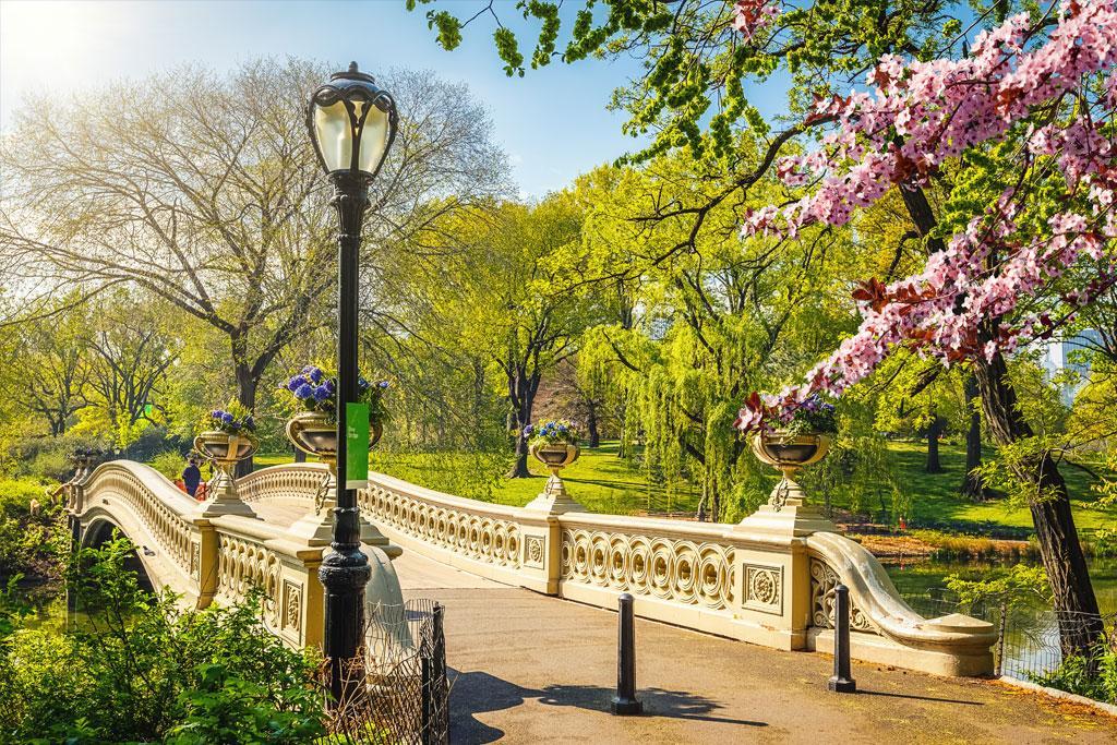 محبوب ترین پارک های شهری در آمریکا