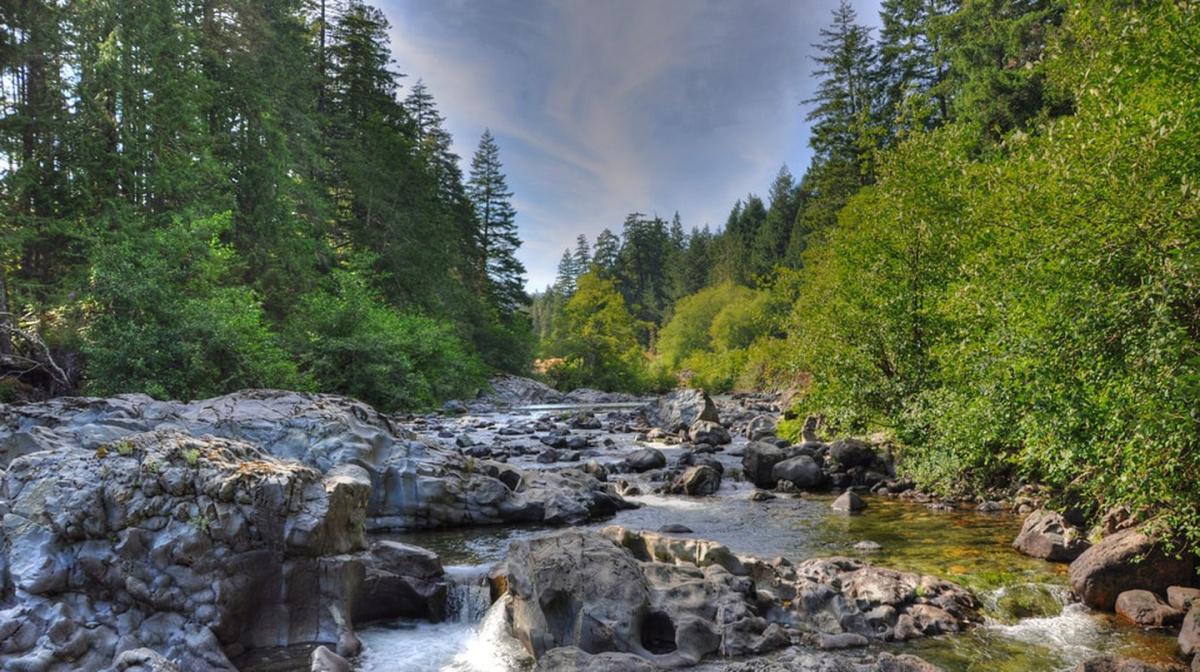 دیدنی های طبیعی جزیره ونکوور را از دست ندهید